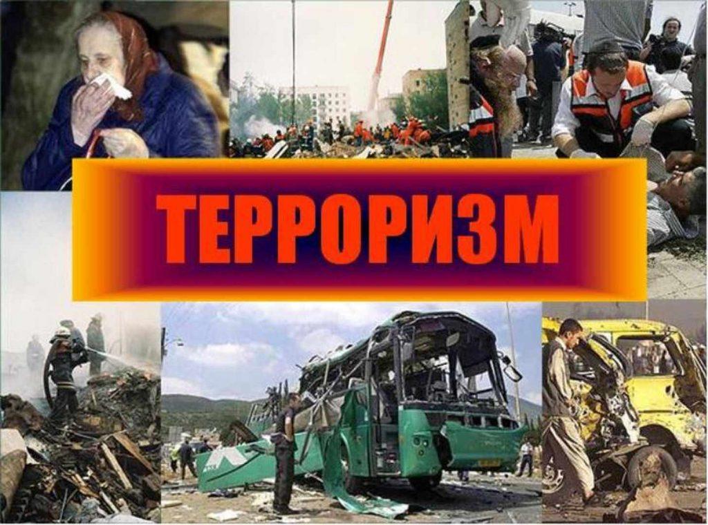 p24_terrorizm